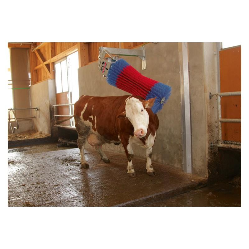 Brosse à Vaches de nettoyage simple HAPPYCOW SWING pour étable