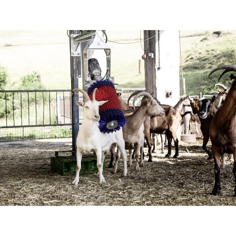 Brosse de nettoyage HAPPYCOW MiniSwing pour Veaux et Chèvres