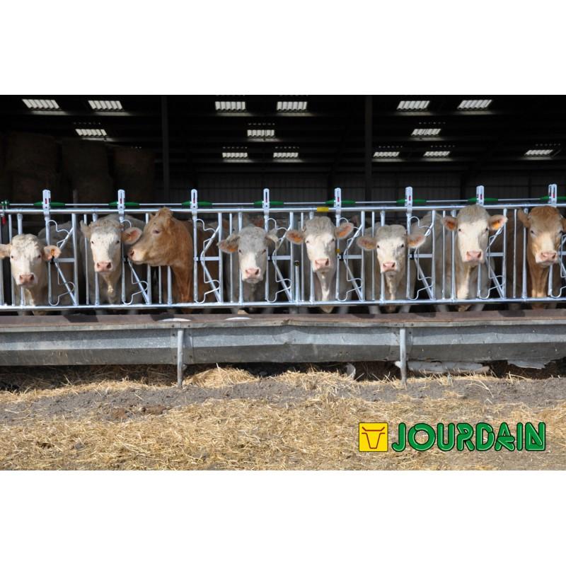 Cornadis Safety IV 8PL / 6 M - JOURDAIN