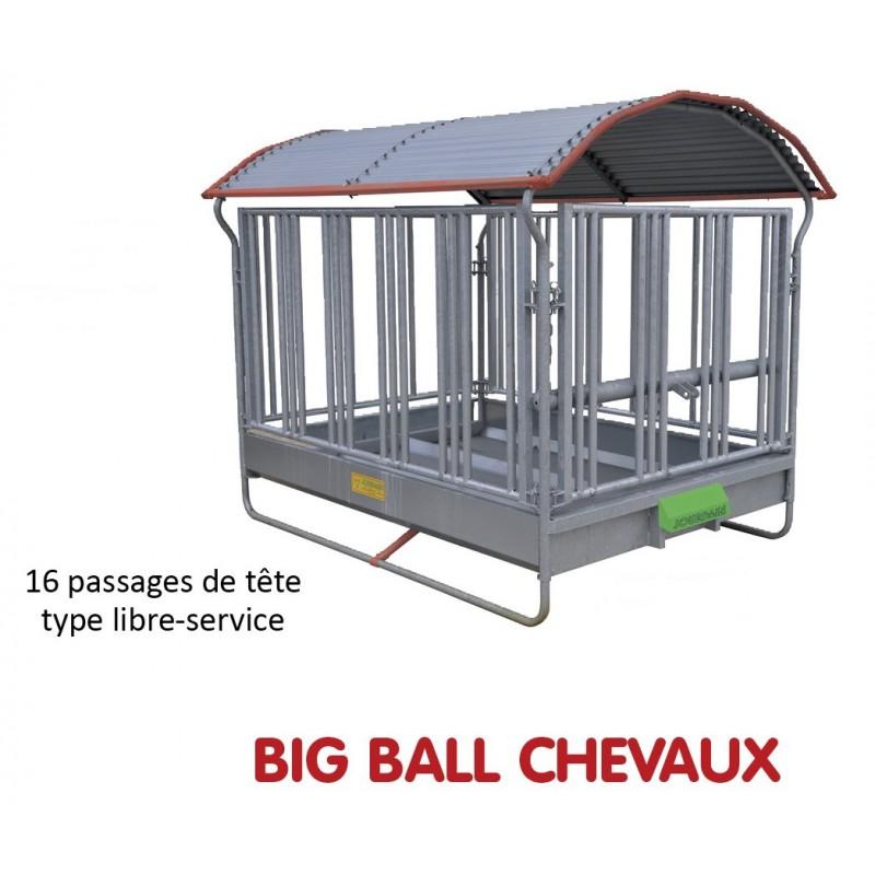 RATELIER BIG BALL SPECIAL CHEVAUX - JOURDAIN
