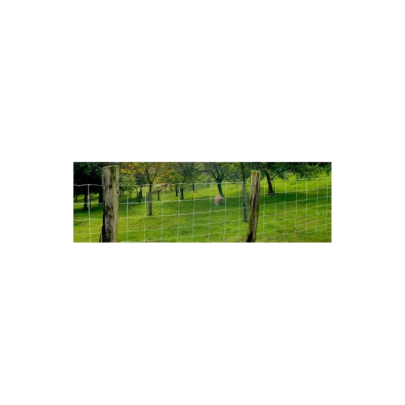 grillage nou prairie galvanis 80 cm 50m pour moutons et poneys. Black Bedroom Furniture Sets. Home Design Ideas